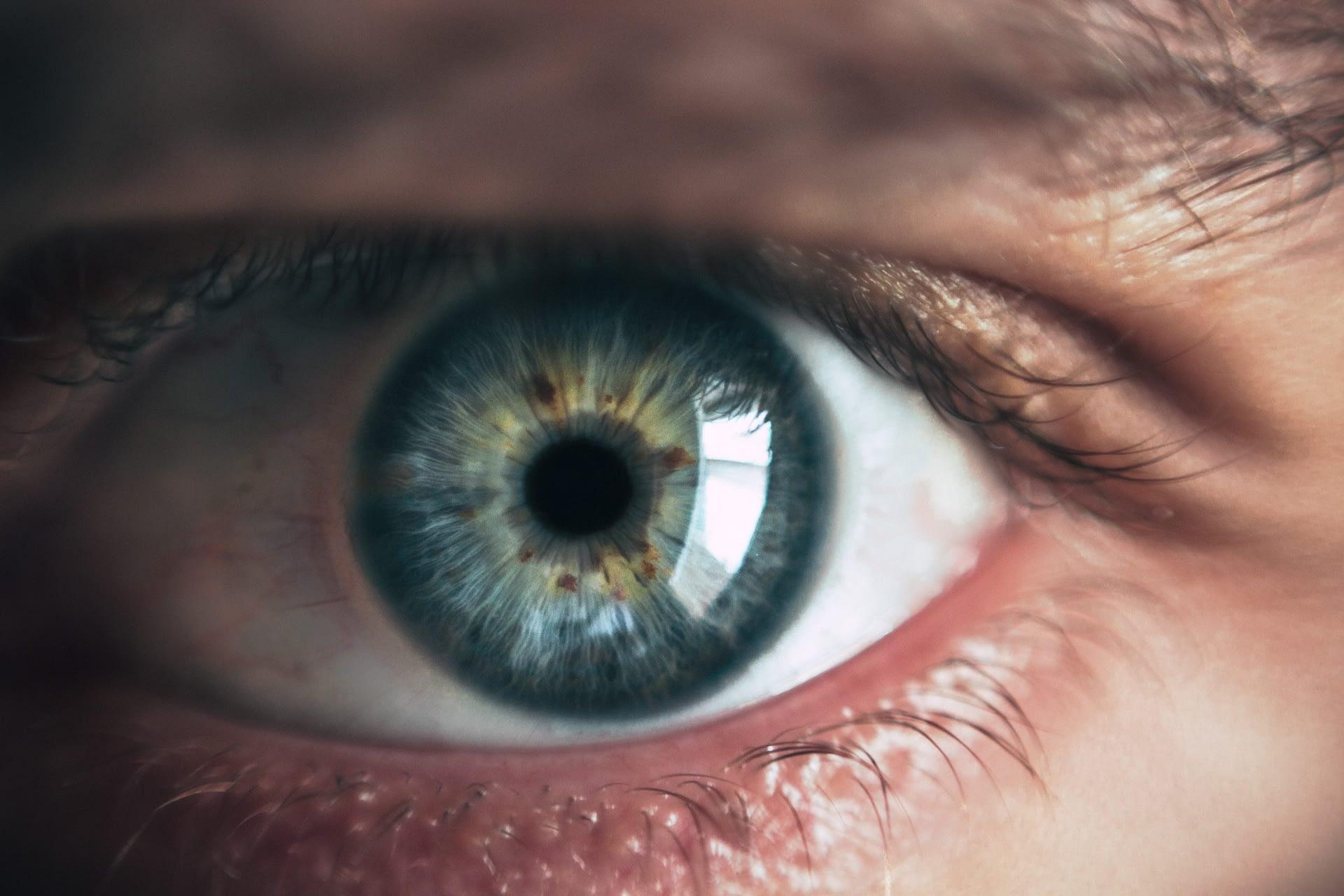 Hoe werkt je intuïtie? Blink – Malcolm Gladwell