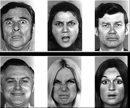 Voorbeelden van de uitgebeelde emoties